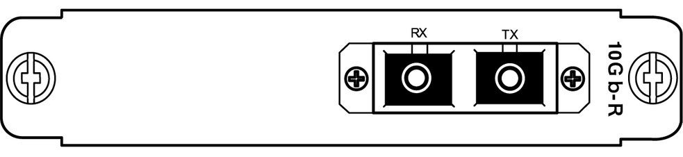 10G-WAN_optical_rear